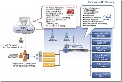 composite API platform architecture